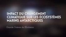 Impact du changement climatique sur les écosystèmes marins antarctiques (Changements climatiques et biodiversité 5/5)