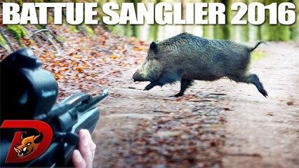 Chasse saison 2016 : Battue Sangliers