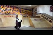 Funny FAILS | Ultimate Skateboarding Fails Compilation - 2016 (FULL HD)