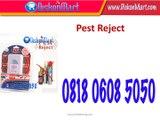 0818 0608 5050 Distributor Alat Pengusir Tikus di Surabaya, Agen Pengusir Tikus, Pest Reject di Surabaya