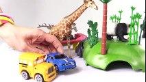 Voitures. Zoo. Dessin animé éducatif pour enfants. Speedy et Bussy visitent le Zoo: animaux sauvages  Dessins Animés Pour Enfants