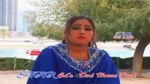 Ta Chi Saba Saba Saba - Nazia Iqbal Pashto Song - Meena - Volume 07
