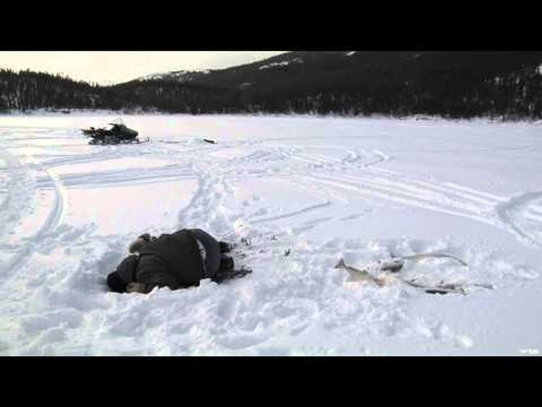 Adventures North - Kuururjuaq Park Adventure Part 1