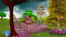 Tiger Cartoon Singing Rain Rain Go Away Nursery Rhymes And Finger Family Rhymes For Childr
