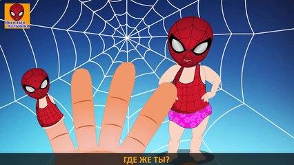 Семья пальчиков ВЕСЕЛЫЙ ПАУК | Человек - паукан | Funny Spider Finger Family in Russian