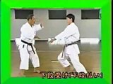 Uke Waza de Karate Do