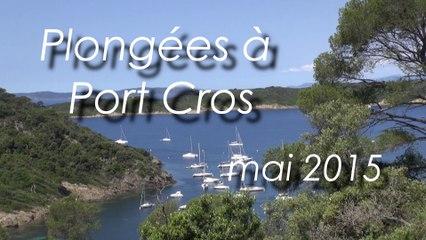 Plongée Bio Port Cros mai 2015