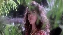 Dekha Hai Pehli Baar (Video Song) - Saajan - Salman Khan - Madhuri Dixit 90s Song - Vendetta