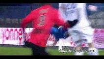 All goals  HD - Auxerre 2-2 Nancy    12.02.2016