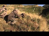 Flatliners - New Zealand Part 1: Bungee Jump