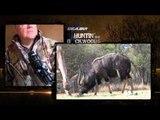 Excalibur's Huntin' the Backwoods - Back in the Bushveld