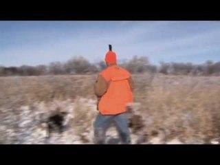 Late Season Roosters Hunt
