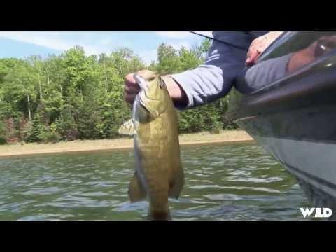 Smallmouth Bass Fishing with Joe Bucher
