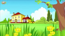 THE GREEDY DOG by KIDS HUT The Greedy Dog Story in English