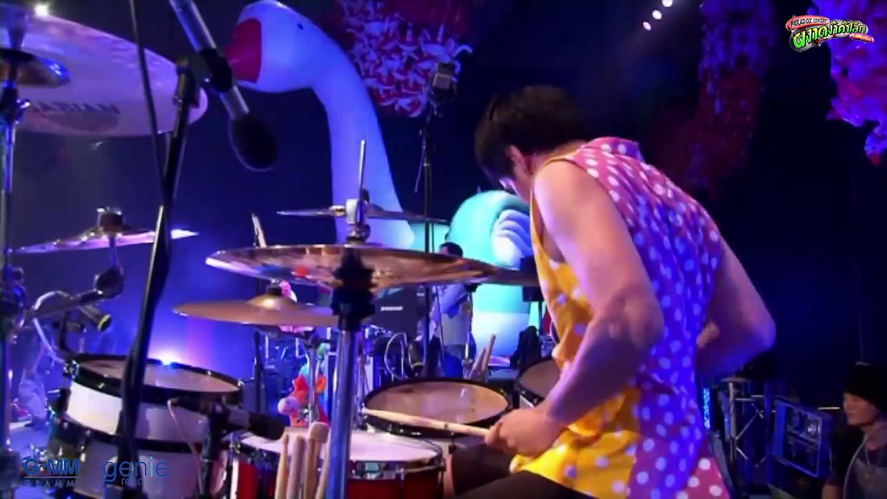 Honey Bee – Paradox [Live Concert Official]