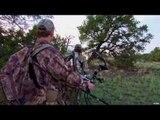 Pie Town Elk Hunting