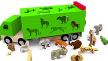 Apprendre les animaux sauvages en français. Vidéos éducatives dessins animés pour bébé. Learn French