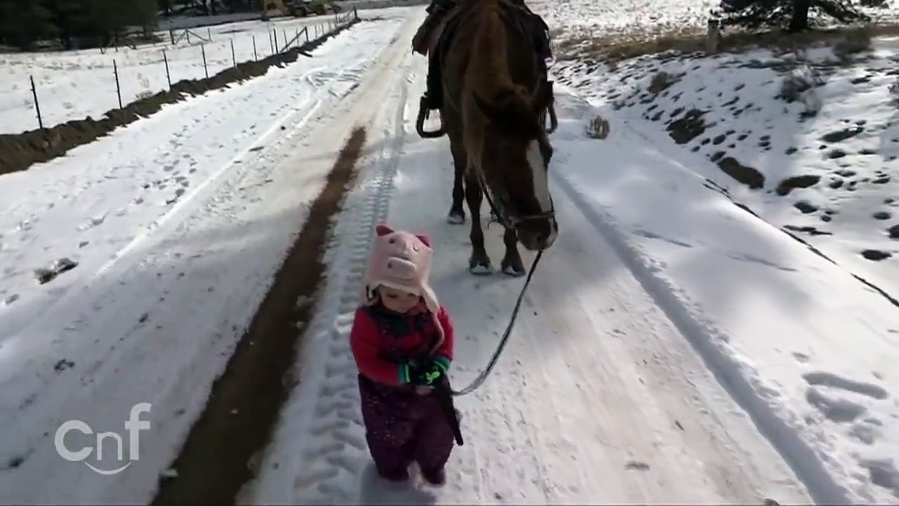 Cute Little Baby With Horse Video Dailymotion
