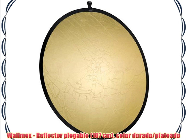 714156-001 Abalorio con forma de huella de perro en plata de ley incluye anilla y pulsera de abalorios Nenalina