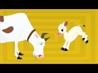 Thotathil Meyudhu - Chellame Chellam - Cartoon/Animated Tamil Rhymes For Chutties