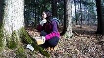 Nature : Elle nourrit des cerfs à la main !