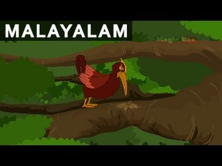 New King For Birds - Jataka Tales In Malayalam - Animation/Cartoon Stories For Kids