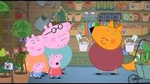 Peppa Pig Season 4 Peppa Pig English Episodes Vol.2
