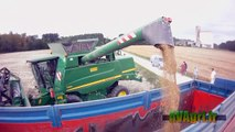JOHN DEERE T560 à la récolte des chardons en 2012