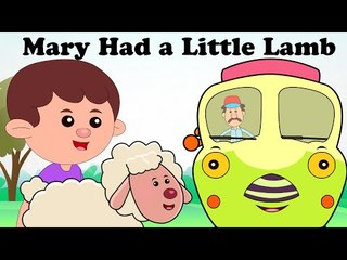 Mary Had A Little Lamb | Plus Lots More Nursery Rhymes | 47 Minutes Compilation |  Cartoon For Kids