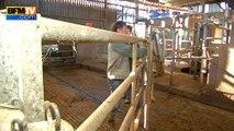 Crise agricole: un producteur de lait témoigne de sa détresse