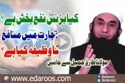 Kya Business Nafa Bakhsh Hai , Tejarat Main Manafa Ka Wazeefa Kya Hai By Maulana Tariq Jameel