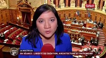 Sénat 360 : Agriculture : Drame sur une exploitation / Nicolas Sarkozy mis en examen : les réactions / Renseignement : rapport annuel parlementaire (17/02/2016)