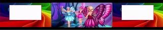 Barbie Mariposa et ses amis les papillons 2008 Dessin Animé Complet En Francais