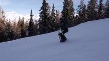 Le ski à quatre pattes, la technique insolite d'un skieur dans les Alpes