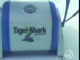 Robot piscine Pontoon : Tiger Shark