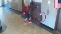 Hero man saves puppy from being strangled when leash gets caught in elevator