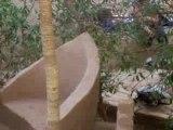 Oasis Desert de Merzouga Maroc