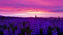 Midnight Sun Iceland - Time Lapse