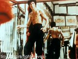 Bruce Lee - Tribute Video - Jeet Kune Do - The Legend