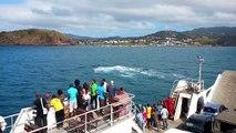 Mayotte: des baleines à Mayotte