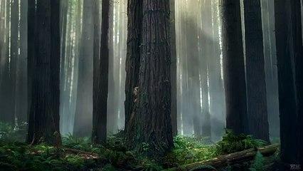 Pete's Dragon - Elliott the Dragon Returns  Teaser Motion Poster (720p Full HD) (720p FULL HD)