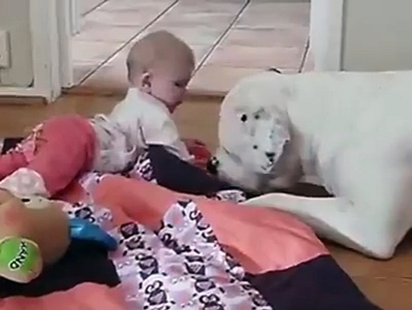 Baby Playing with Pet Dog