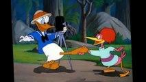 DONALD canard !!! Tic an Tac dessin animéS amusant épisodeS 2015 ! COMPILATION amusant [HD]