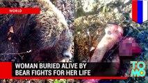 Worst animal attacks! Bear kills woman, crocodile kills swimmer, pit bull attacks & more - TomoNews