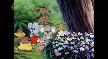 Blinky Bill Season 2 Episode 12 Blinky Bill and the Lost Pup