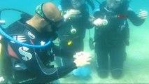Fethiye - Deniz Dibinde Pişti Oynadılar