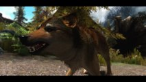 TES V Skyrim Mods: True Wolves Of Skyrim by KrittaKitty