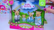 Sylvanian Families Calico Critters Deer Family go to the Doctor Setup Review Play - Kids Toys