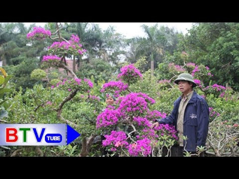 Làng Phú Lâm: Làm giàu từ thú chơi hoa, cây cảnh | BTV