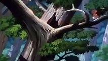 DONALD canard dessin animés complet épisodes & Tic et Tac - Disney films classiques_Part3